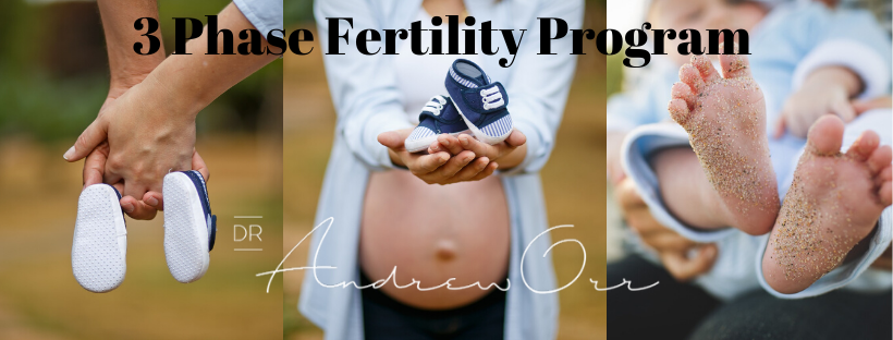3 PhaseFertility Program