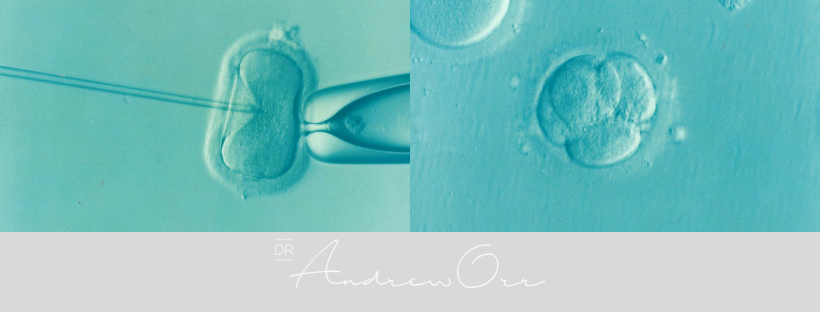 IVF cover image