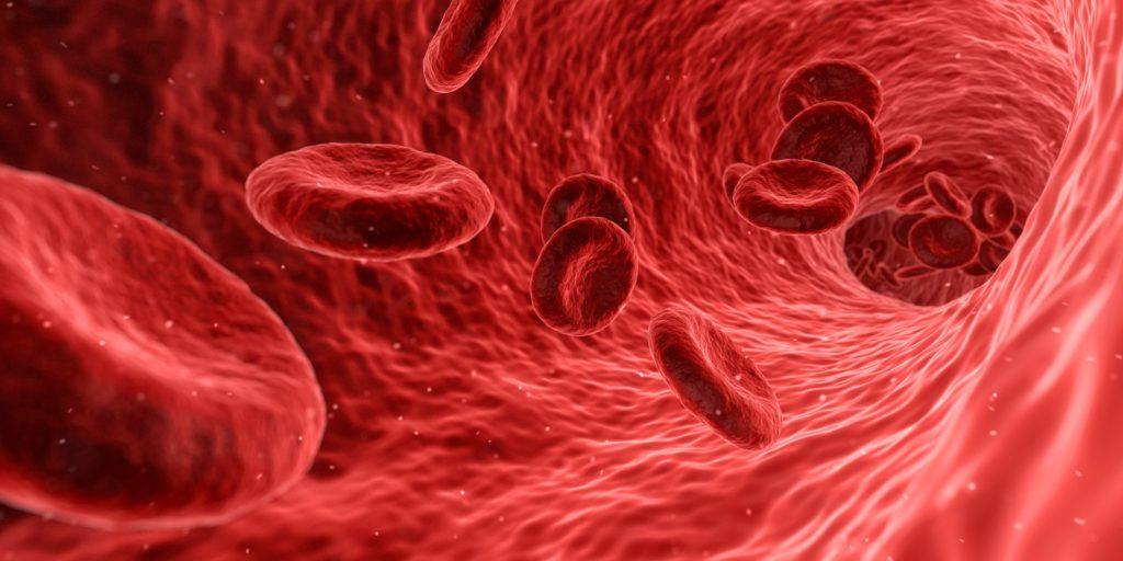 blood 1813410 1920